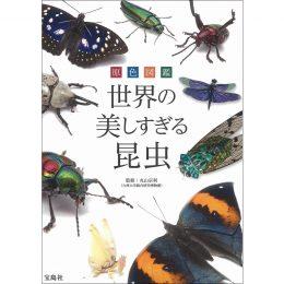 原色図鑑 世界の美しすぎる昆虫